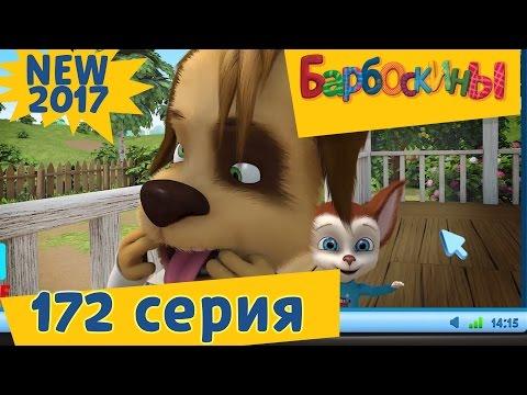 Барбоскины - 172 серия. Дубль Цыпа. Новая серия! Премьера! (видео)