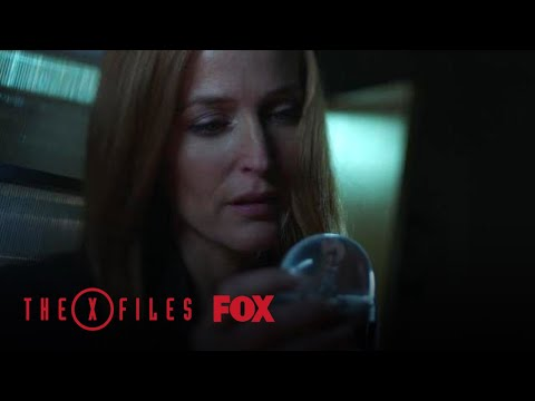 Scully Wakes Up In A Hospital | Season 11 Ep. 5 | THE X-FILES