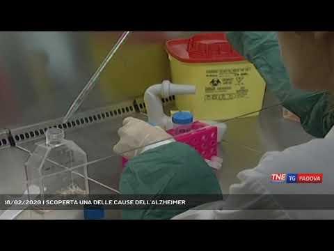 18/02/2020 | SCOPERTA UNA DELLE CAUSE DELL'ALZHEIMER