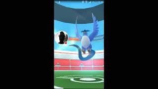 Regardez-moi jouer à Pokémon GO !
