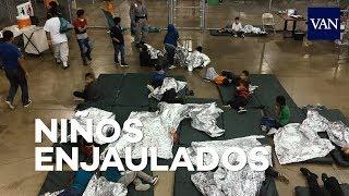 Niños 'enjaulados' y separados de sus familias