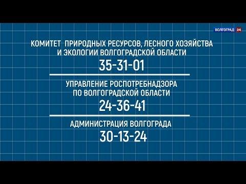 Управляющие компании. Снижение цен на газ. Выпуск от 08.07.2019