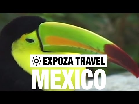 Travel - A country of Aztec and Mayan history, Acapulco, Mexico City, volcanoes, impenetrable forests and breathtaking waterfalls.