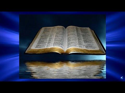 «Свет православия». 22.11.20. 811 выпуск.