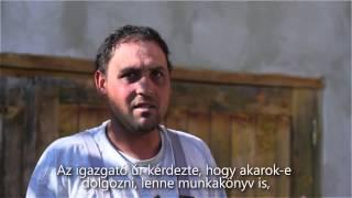 Coscodar Vasile
