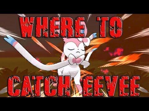 how to find eevee in pokemon x