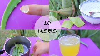 10 ways I use Aloe Vera! - Love this stuff!! - YouTube