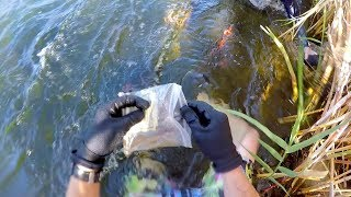 Video I Found a Bag of Cash Underwater in the River! (Guess How Much Money was Inside?!) MP3, 3GP, MP4, WEBM, AVI, FLV Juni 2019