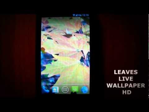 live wallpapers wind accuweather videos for android
