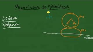 5 dez. 2014 ... MECANISMOS DE ANTIBIOTICOS .... Curso de Farmacologia: Aula 30 - nInibidores da sintese da parede celular parte II - Duration: 33:12.