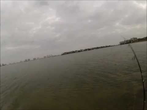 Wade Fishing for Speckled trout – Clearwater, FL Jan 2013