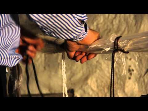 Mekikçi Kutnu Videoları