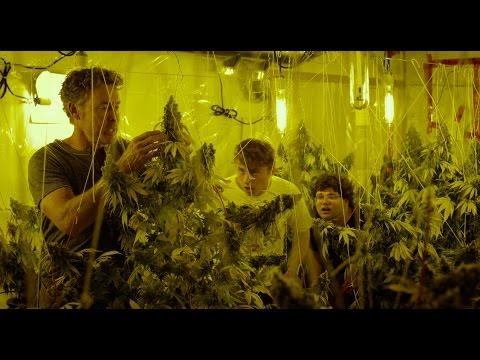 Cannabis Kid   l   Trailer deutsch HD