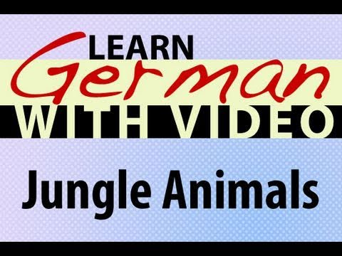 Learn German with Video – Jungle Animals
