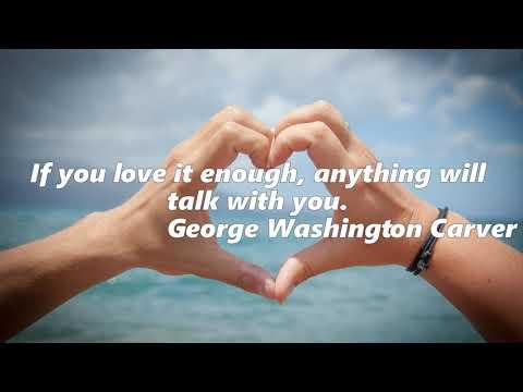 Romantic quotes - SHORT LOVE QUOTES Romantic Love Quotes