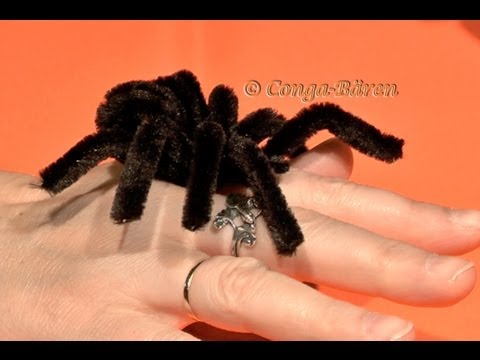 Halloween Spinnen - halloween spider