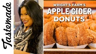 Famous Wright's Farm Apple Cider Donuts | The Tastemakers-Jen Phanomrat by Tastemade