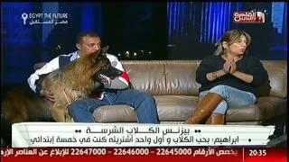 #القاهرة_والناس : شروط تربية الكلاب الشرسة فى مصر