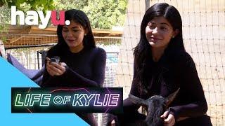 Video Kylie Wants To Live On A Farm | Life of Kylie MP3, 3GP, MP4, WEBM, AVI, FLV September 2018