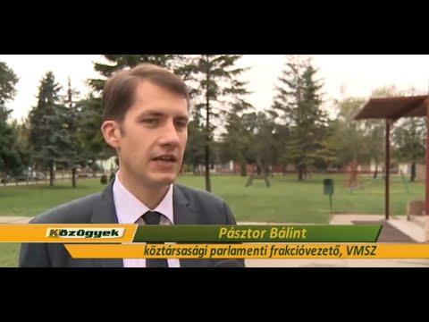 Pásztor Bálint: Életképes közösség él a szórványban -cover