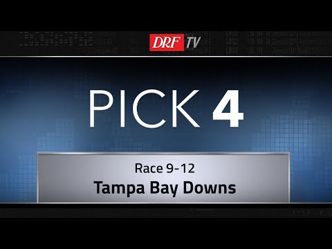 Tampa Bay Downs Saturday Pick Four - Races 9-12