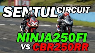 Video Hampir Nabrak Biawak! - CBR250RR vs Ninja250FI - SENTUL INTERNATIONAL MP3, 3GP, MP4, WEBM, AVI, FLV Februari 2019