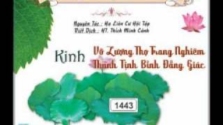 Kinh Vô Lượng Thọ Trang Nghiêm Thanh Tịnh Bình Đẳng Giác 2 - DieuPhapAm.Net
