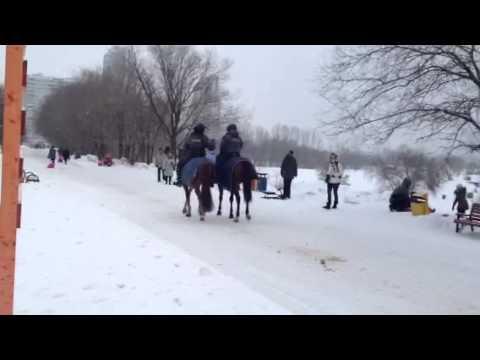 Патруль на лошадях
