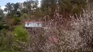 Solan India  City new picture : Sadhupul in solan himachal pradesh india