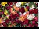 Nasarayane- malayalam Christian songs