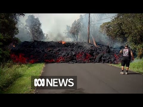 Hawaiian lava flows 'faster than a turtle' (видео)
