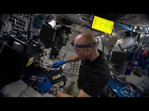 Λούκα Παρμιτάνο:Διατροφή και αντίληψη του χρόνου στο Διάστημα  …