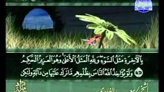 المصحف المرتل 14 للشيخ سعد الغامدي  حفظه الله