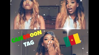 My Cameroon Tag is here and basically I am answering questions about my background. I pulled these questions up from the internet precisely from ...