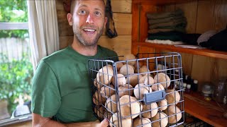 Video He Has To Grow Or Forage Everything He Eats For 1 Year! MP3, 3GP, MP4, WEBM, AVI, FLV Agustus 2019