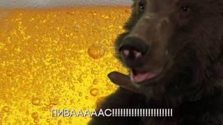 Russian bear and PIKO TARO