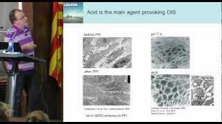 Seminar: Mucosal Integrity In Gastro-oesophageal Reflux Disease (Dr. Ricard Farré)