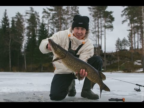 рыбалка в апреле на щуку на жерлицы
