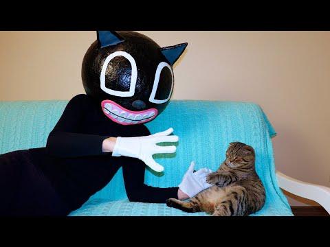 Cartoon cat in real life vs My cat Rory- The Horror Story