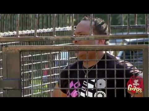 Human Zoo Prank