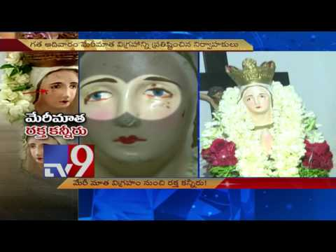 Mother Mary Statue Cries Blood Tears, Hundreds Flock To See 'miracle' - TV9