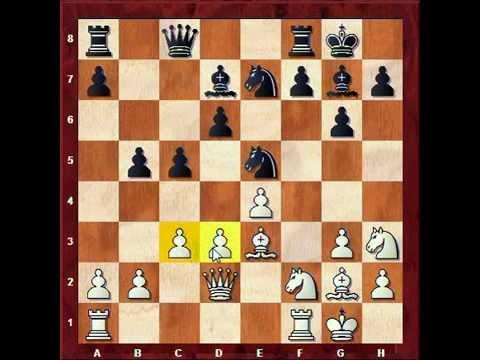 Carlsen vs Wojtaczek 2014