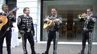 Popular Mexican song by Mariachi Band in Cleveland