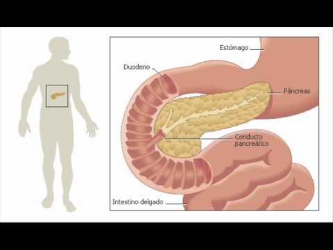 Diabetes se cura fácil +584127862954