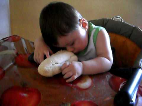 bambino si addormenta mangiando il panino!