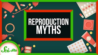 5 Things We Get Still Wrong About Human Reproduction by  SciShow