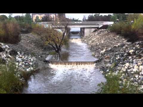 Bull Creek, Van Nuys, California, Dec 21, 2010