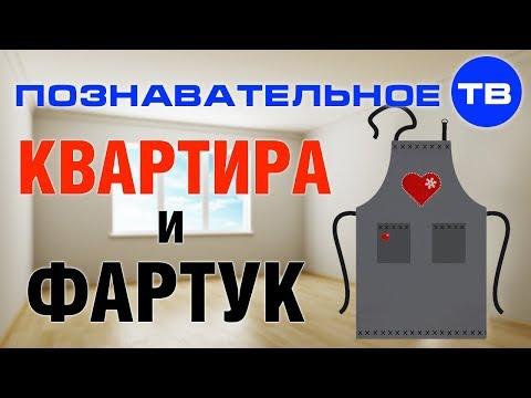 Как появилась КВАРТИРА и при чём здесь ФАРТУК (Познавательное ТВ Артём Войтенков) - DomaVideo.Ru