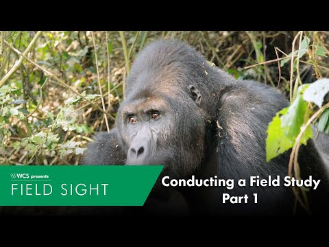 Conducting a Field Study part 1