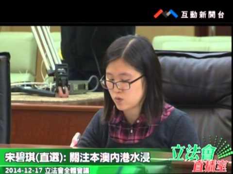 宋碧琪 20141217立法會全體會議